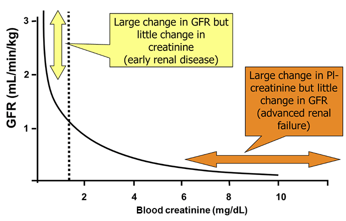 creatinine and bun relationship